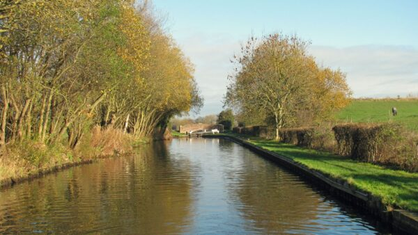 > Winter sunshine along the Birmingham & Fazeley Canal