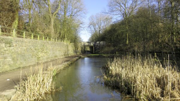 Water in the Hollinwood Canal