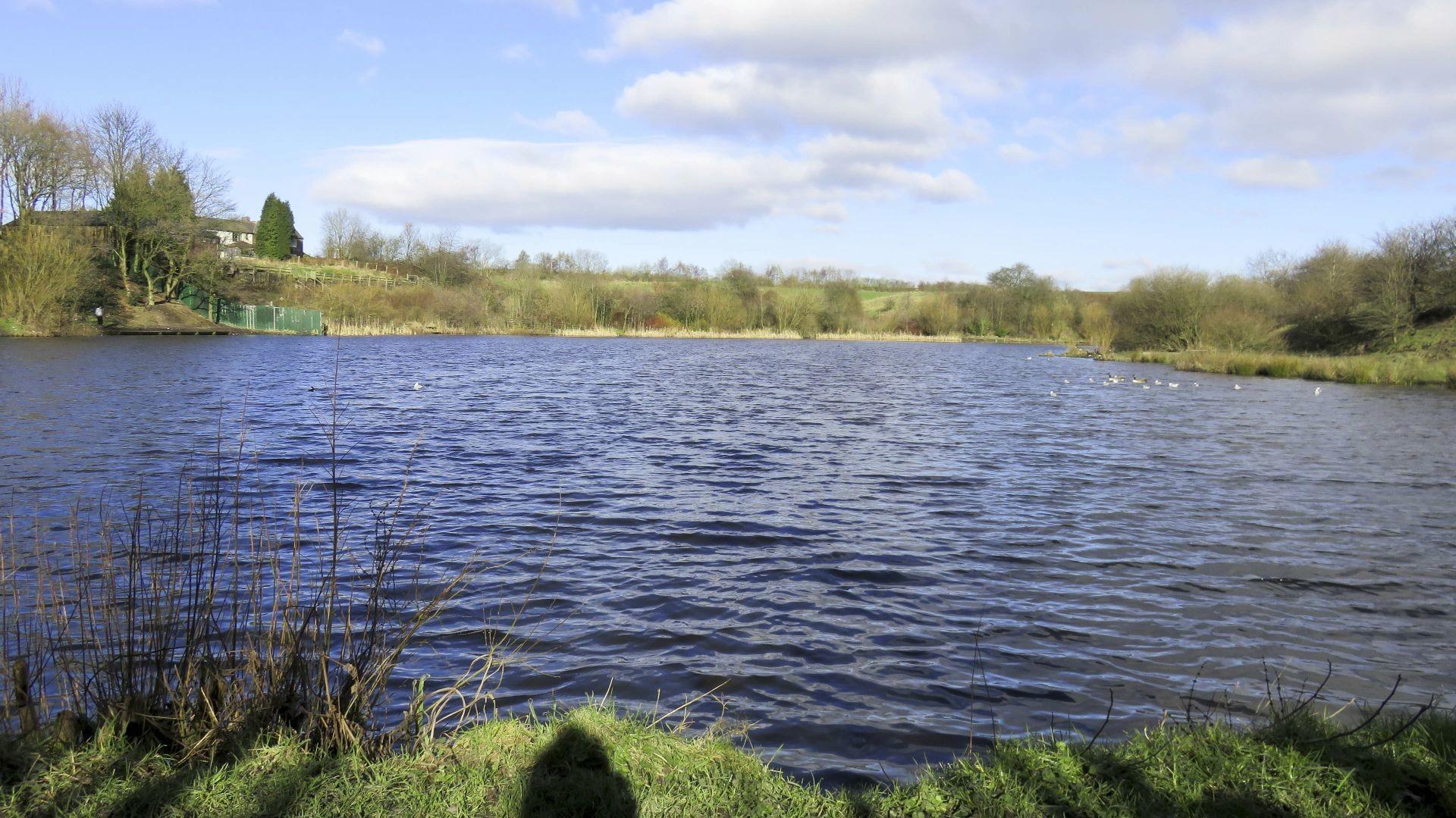 Crime Lake