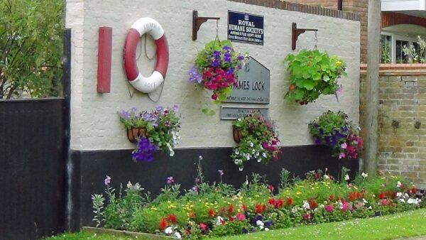 Thames Lock flowerbed.